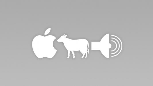 Apple + Cow = A Sound wallpaper