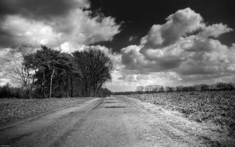 Road Clouds Trees BW高清壁纸