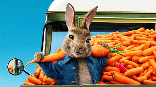 比得兔2 Peter Rabbit 2: The Runaway (2020)