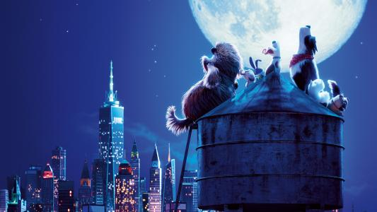 爱宠大机密2 The Secret Life of Pets 2 (2019)
